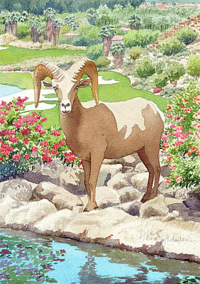 Painting - Bighorn Sheep On Golf Course by Mary Helmreich