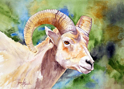 Painting - Bighorn Sheep Portrait by Marsha Karle