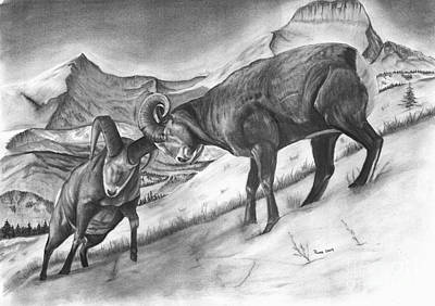 Bighorn Sheep The Battle For Supremacy Art Print by Russ  Smith