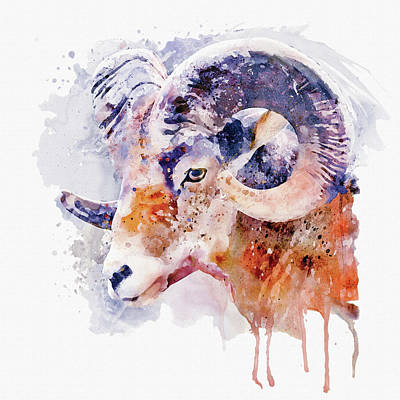 Mixed Media - Bighorn Sheep Watercolor Portrait by Marian Voicu