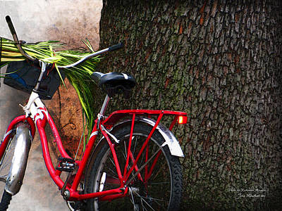 Photograph - Bike Resting by Joan  Minchak