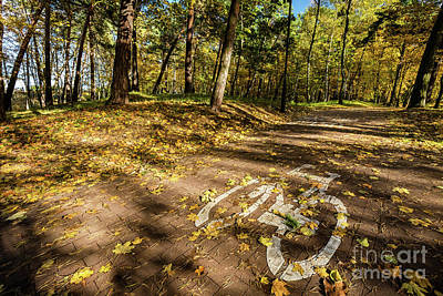 Fall Photograph - Bike Road Sign In A Park On Autumn by Michal Bednarek
