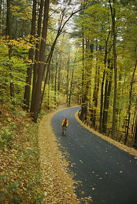 Forests And Forestry Photograph - Biker On Road Amidst Fall Foliage by Skip Brown