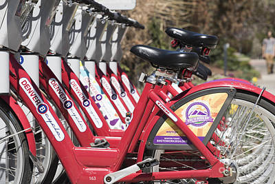 Photograph - Bikes For Rent by Juli Scalzi