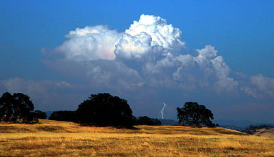 Billowing Thunderhead Art Print by Frank Wilson