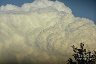 Photograph - Billowing White Clouds by Ruth Housley