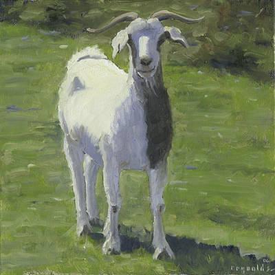 Billy Goat Art Print