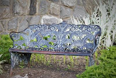 Photograph - Biltmore Bench by Allen Nice-Webb