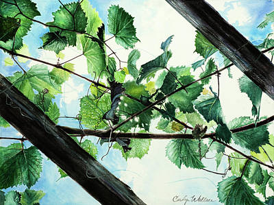 Biltmore Grapevines Overhead Art Print by Carolyn Coffey Wallace