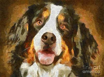 Rescue Dog Painting - Bimbo - Bernese Mountain Dog by Dragica  Micki Fortuna