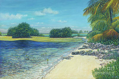 Bimini Mangroves Art Print by Danielle Perry