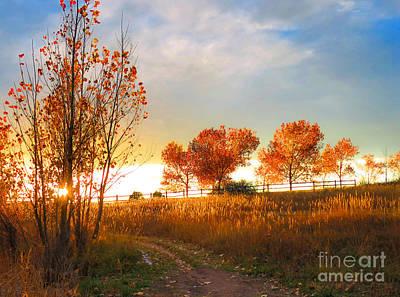 Bingham Lake - Trees In The Sunset Art Print