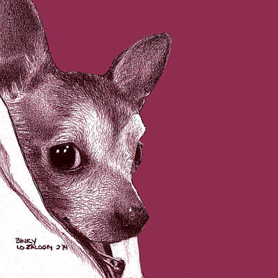 Pup Drawing - Binky In Magenta by Lorraine Zaloom