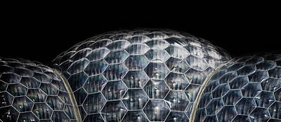 Bio Dome Art Print by Martin Newman