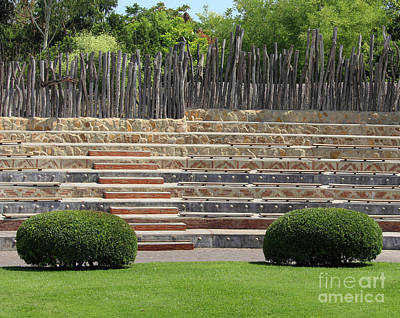 Vintage Pharmacy Royalty Free Images - Bioparc Amphitheatre Valencia Royalty-Free Image by Eddie Barron