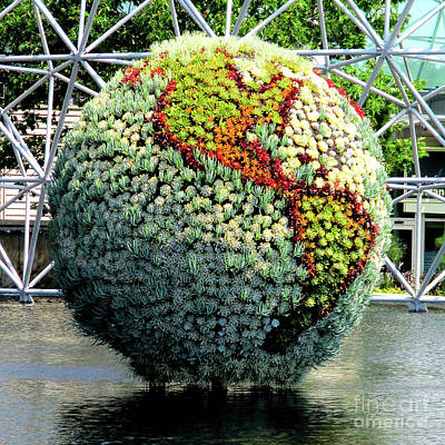 Photograph - Biosphere 12 by Randall Weidner