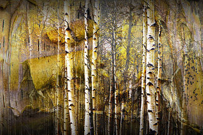 Photograph - Birch Bark And Trees Abstract by Randall Nyhof