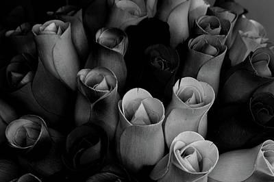 Birch Bark Roses 1 Art Print by Cindy Nunn