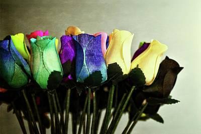 Photograph - Birch Bark Roses 13 by Cindy Nunn