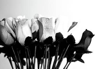 Photograph - Birch Bark Roses 18 by Cindy Nunn