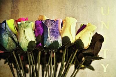 Photograph - Birch Bark Roses 19 by Cindy Nunn