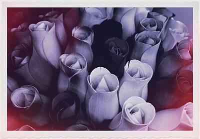 Birch Bark Roses 2 Art Print by Cindy Nunn