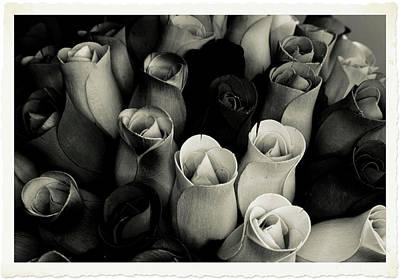 Birch Bark Roses 4 Art Print by Cindy Nunn
