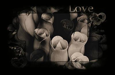 Photograph - Birch Bark Roses 6 by Cindy Nunn