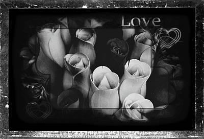 Photograph - Birch Bark Roses 7 by Cindy Nunn