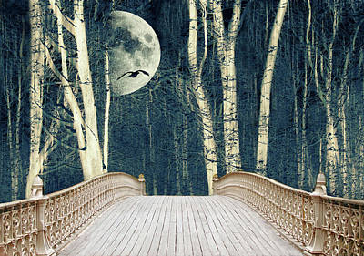 Photograph - Birch Bridge by Jessica Jenney