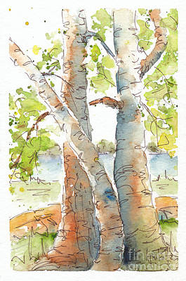 Painting - Birch Buddies by Pat Katz