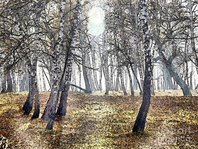 Israeli Flag - Birch forest painting by Odon Czintos