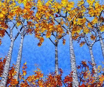 Cardinal Digital Art - Birch Grove Painted by Cynthia Decker