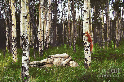 Birch Having A Tree Break Art Print