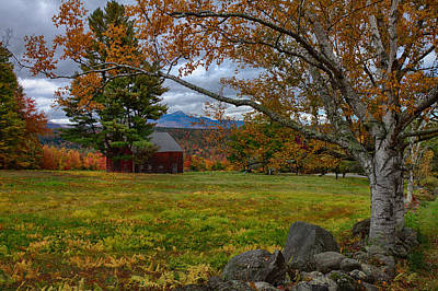 Photograph - Birch Over The Mountains by Jeff Folger
