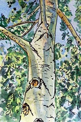 Birch Tree Sketchbook Project Down My Street Print by Irina Sztukowski
