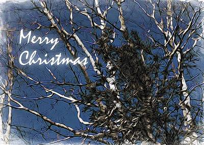 Holiday Card Photograph - Birch Tree Xmas Card by Holly Massie
