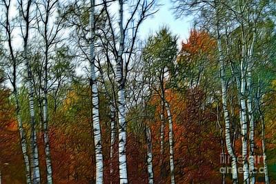 Just Desserts - Birch Trees in Autumn by Becky Kurth