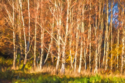 Painting - Birch Trees Parade by Lutz Baar
