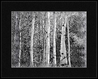 Art Print featuring the photograph Birch Trees by Susan Kinney