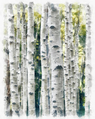 Painting - Birch Trees Watercolor Painting by Unsplash Peng Chen