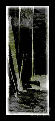 Digital Art - Birch Wood Abstract by Liz Alderdice