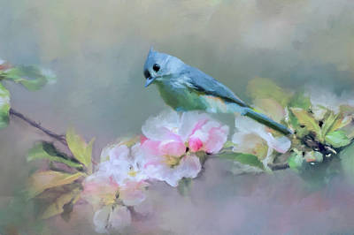 Photograph - Bird And Blossoms by Cathy Kovarik