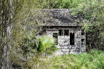 Bird Blind At Frontera Audubon Art Print