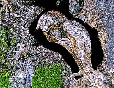 Digital Art - Bird - Digital Photosculpting Of A Photograph Of A Fallen Tree Trunk by Merton Allen
