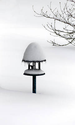 Bird Feeder In Snow Art Print