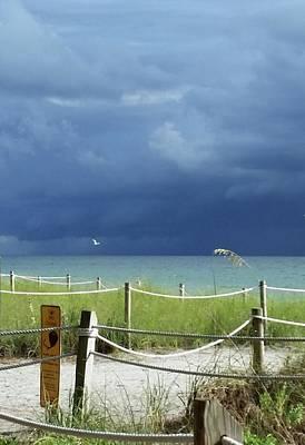 Photograph - Bird Flies Over Captiva by Florene Welebny