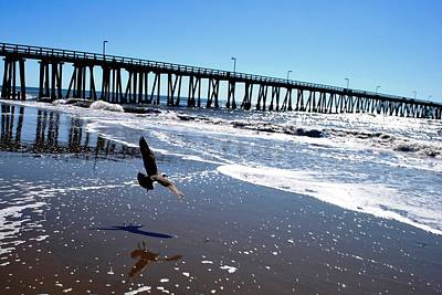 Photograph - Bird Flies Towards Pier by Matt Harang