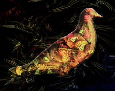 Bird From Paradise Art Print by Andy Young