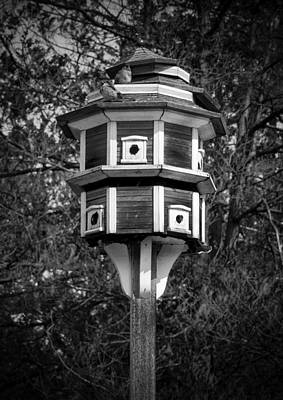 Art Print featuring the photograph Bird House by Jason Moynihan